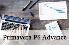 Primavera P6 Advanced Training Course