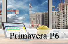 Primavera P6  Training Course